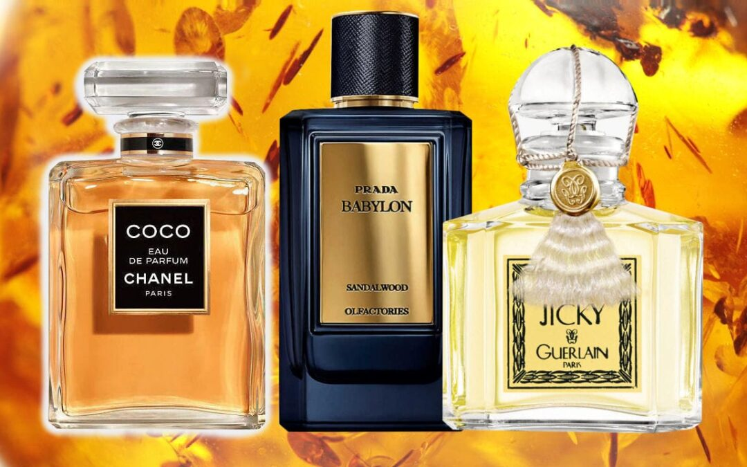 What are The Best Amber Perfumes to Use?