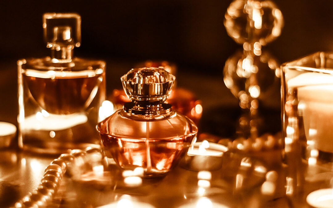 Why Calvin Klein Euphoria Eau de Parfum is the First Choice for Many Women